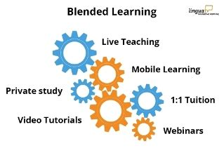 Blended Learning and the Use of Information Technology in